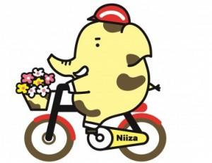★サイクリングゾウキリン(花)