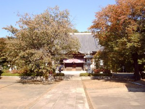 法台寺境内