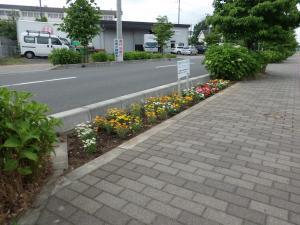 東久留米・志木線の花壇写真